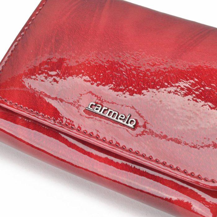 Kožená peňaženka Carmelo – 2105 P CV